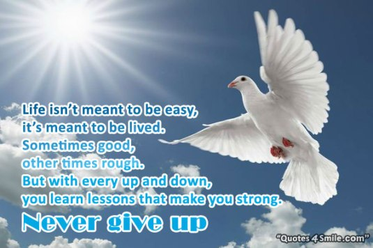 life-is-not-meant-to-be-easy